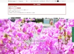 Screenshot of www.town.higashikagura.lg.jp
