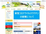 Screenshot of www.town.tara.lg.jp
