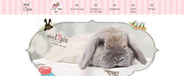 Screenshot of www.usagi-monlapin.com