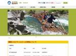 Screenshot of www.vill.kitayama.wakayama.jp