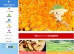 Screenshot of www.vill.nagano-toyooka.lg.jp