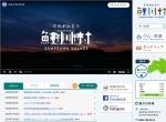 Screenshot of www.vill.samegawa.fukushima.jp