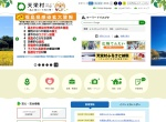 Screenshot of www.vill.tenei.fukushima.jp
