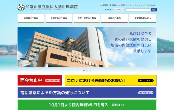 Screenshot of www.wakayama-med.ac.jp