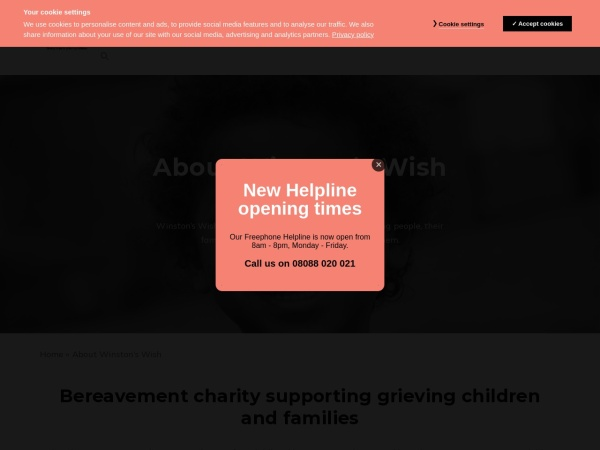 Screenshot of www.winstonswish.org