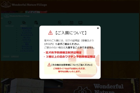 Screenshot of www.wnv.tokyo
