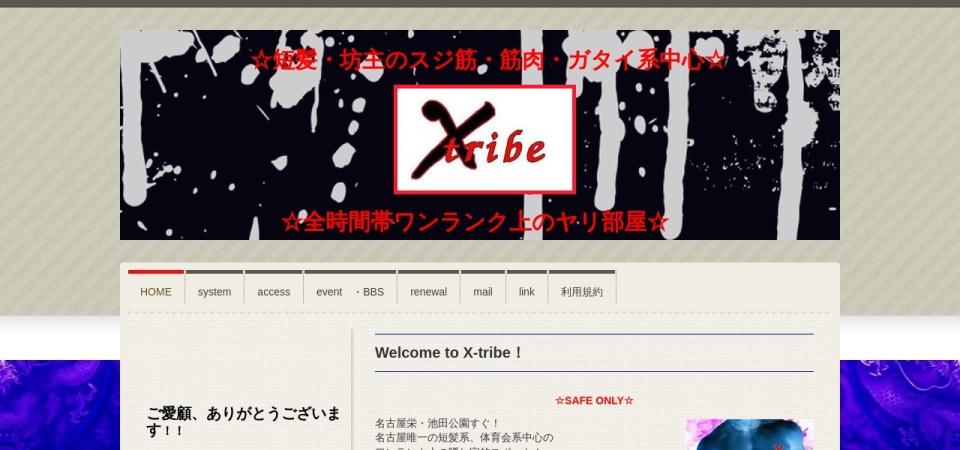 Screenshot of www.x-tribe758.com