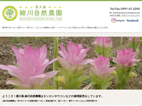 Screenshot of yakushima-hosokawa.com