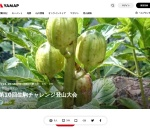 Screenshot of yamap.co.jp