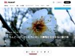 https://yamap.co.jp/activity/698874
