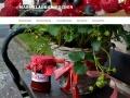 Vorschau auf Erdbeermarmelade Rezept zum selber machen