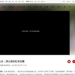 湖北南山头:深山里的红色宝藏_新闻频道_央视网(cctv.com)