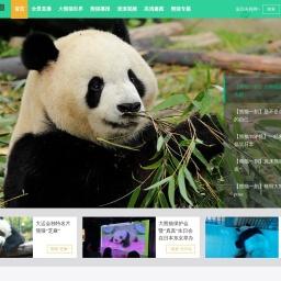 iPanda熊猫频道_熊猫频道