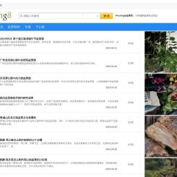 【PenJing8|盆景吧】-- 一个分享盆景制作的网站