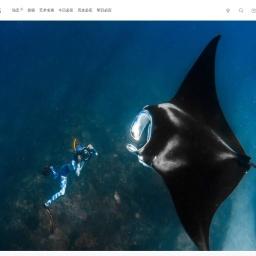 巨型海洋蝠鲼和摄影师 | 必应壁纸|必应美图