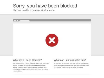 stocksnap.io Screenshot