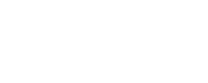 WordPress VIP