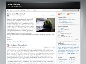 http://s0.wp.com/wp-content/themes/pub/inove/screenshot.png?m=1249406713g